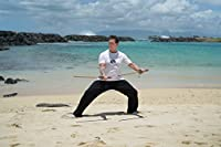 Tai Chi Fusion: IRON with David-Dorian Ross (YMAA) 2018 workout combining tai chi and strength training **BESTSELLER** by YMAA