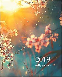 Amazon.com: 2019 Weekly Planner: Calendar Schedule Organizer ...