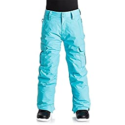 Quiksilver Boys Porter Pants 12/Large Blue fish