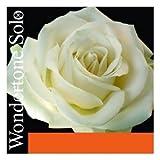 Pirastro Wondertone Solo 4/4 Violin String Set - Medium Gauge with Ball End Steel E