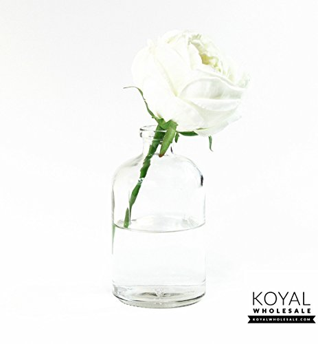 Koyal Wholesale Glass Bud Vases Home Decor Vases Floral Containers