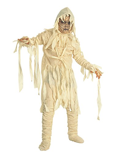 Universal Studios Deluxe Child's Mummy Costume, Medium -