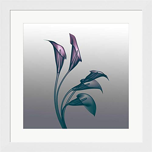 Ombre Calla Lilies X-Ray by Color Me Happy Framed Art Print Wall Picture, White Flat Frame, 20 x 20 inches ()
