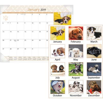 AT-A-GLANCE 2019 Desk Calendar, Desk Pad, 21-3/4'' x 17'', Standard, Puppies (DMD16632) by AT-A-GLANCE