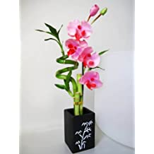 9GreenBox - Live Spiral 3 Style Lucky Bamboo Plant Arrangement with Orchid & Ceramic Vase