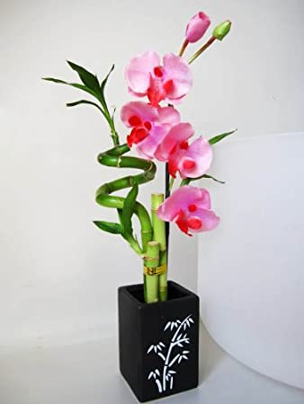 9GreenBox   Lucky Bamboo U2013 Spiral Style With Artificial Flowers And Ceramic  Vase