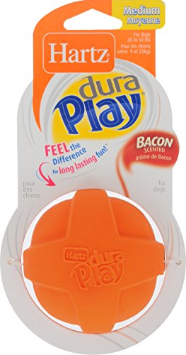hartz-dura-play-ball-medium-for-dogs-available-in-2-colors-orange-and-purple