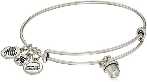 Alex and Ani Unexpected Blessings II Rafaelian Silver Bangle Bracelet