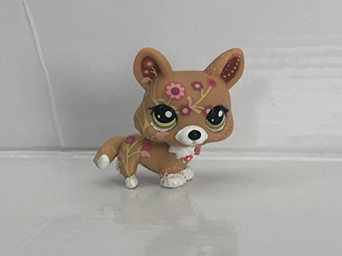 Corgi Toy Collectors (Corgi #1851 (Green Eyes) - Littlest Pet Shop (Retired) Collector Toy - LPS Collectible Replacement Figure - Loose (OOP Out of Package & Print))