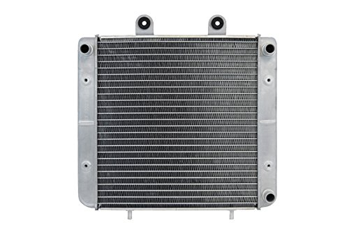 - RADIATOR FOR POLARIS FITS SPORTSMAN ATV 450 500 1240152 1040305 2455010 A002