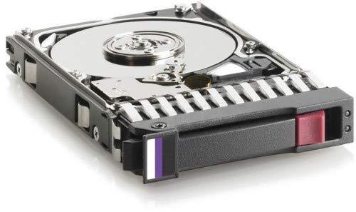 2.5-Inch Disco Duro 2.5, 300 GB, 15000 RPM Hewlett Packard Enterprise M6625 300GB 6G SAS 15K RPM SFF Dual Port Hard Drive 2.5