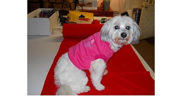 Joybies Camisa deportiva para perro macho o hembra XX-Grande ...