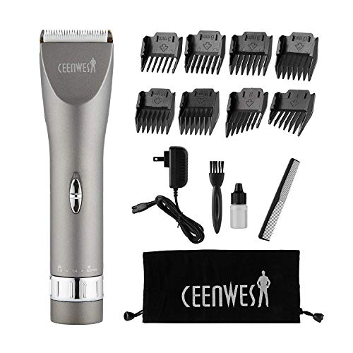 CEENWES Updated Version Professional