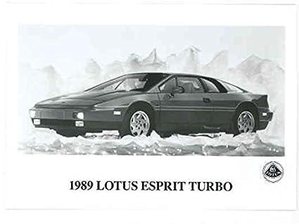 Amazon.com: 1989 Lotus Esprit Turbo Press Kit: Entertainment Collectibles