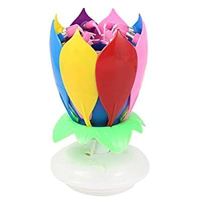 DSstyles Double Layers Lotus Musical Happy Birthday Candles Romantic Flower Light Cake Kids Party Gifts 【Colorful】: Toys & Games