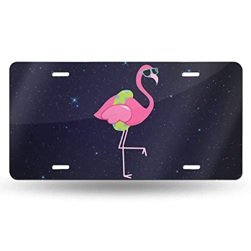 Flamingo Clipart Border Personalized Novelty Front License Plate Decorative Vanity Aluminum Auto Car Tag 12 x 6 Inch