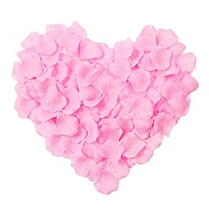 CATTREE Rose Petals, 3000 PCS Silk Artificial Petals Vase Home Decor Wedding Bridal Decoration Party Ceremony Wholesale (Pink) 83