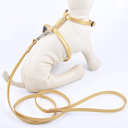 gold LLIND Home Multicolor cat Chest Strap with pet leashes Leather Slippery cat Leash Harness cat Supplies (color   gold)