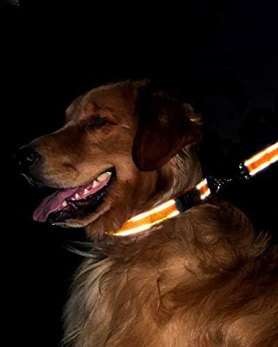 Joytale Collare Personalizzato Cane Riflettente Completo per Cucciolo Cane Collare Nylon per Cani Incisione con Nome Blu