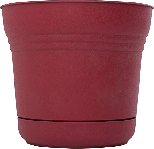 Bloem SP1212 Saturn Planter, 12-Inch, Union Red