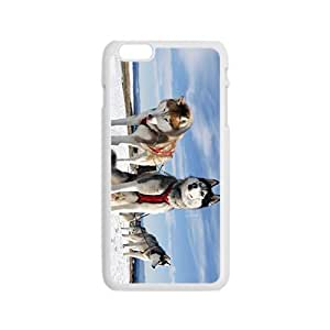 Eight Below Hight Quality Plastic Case for Iphone 6