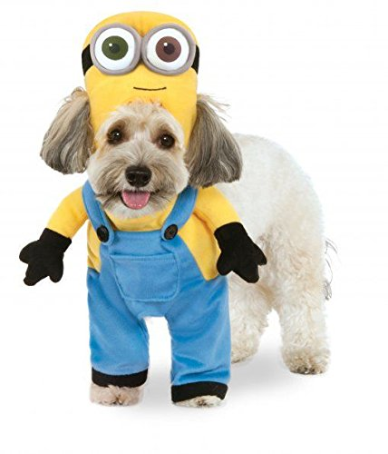 Minion Bob Arms Pet Suit, Medium
