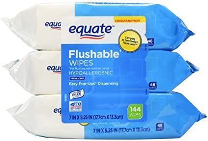 480 Ct. Equate Flushable Wipes Fresh Scent