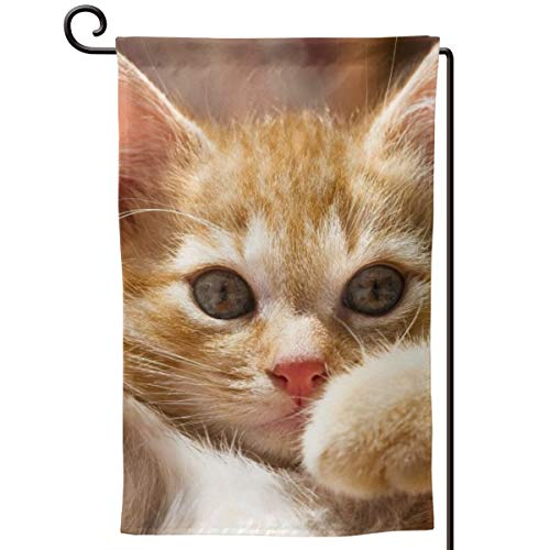 Cfean Seasonal Garden Flags, Cute Kitty, Outdoor Double Sided Decorative Banner for Holidays Yard -12.5x18 Inch