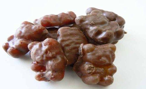 Milk Chocolate Covered Gummy Bears 5 Pound Bag (Bulk)