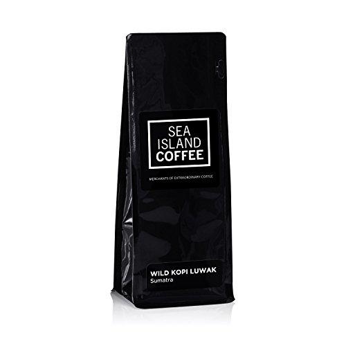 Wild Kopi Luwak, Northern Sumatra - Cafetiere Grind Coffee (8.8 Oz Bag) by Sea Island Coffee