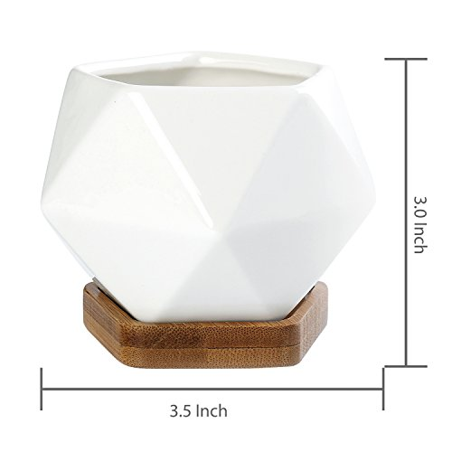 Modern Geometric White Ceramic Mini Succulent Planter Pots with Removable Bamboo Saucer, Set of 2