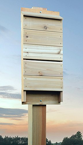 ARBORIA Bat House Shelter Box for Natural Pest Control Made with Weather Resistant Cedar Wood 21.5 Inches High by ARBORIA (Image #3)