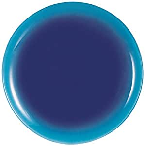Luminarc 9299548 Fizz - Platos llanos (25 cm, 6 unidades), color azul