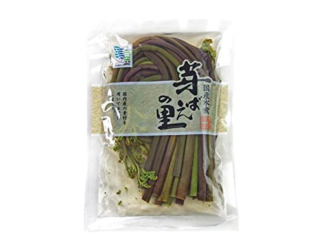 厳繕う熱心なド田舎直産 先行予約天然山菜 木の芽(山椒) 1kg 5月中旬