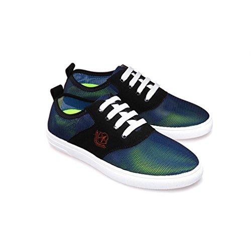 HYLM Verano Los nuevos zapatos netos Hombres zapatos al aire libre casual bajo para ayudar con zapatos de malla Zapatos planos Zapatos transpirables Blue