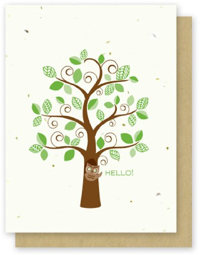 Grow A Note® Hello Owl 4-pack
