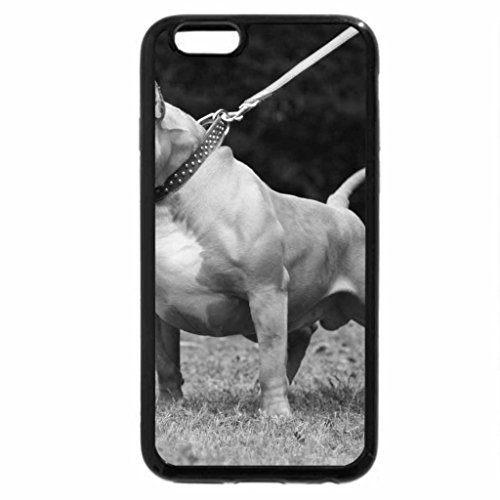 iPhone 6S Plus Case, iPhone 6 Plus Case (Black & White) - Bully Pitbull Dog