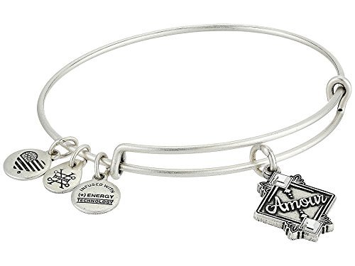 Amour Necklace - Alex and Ani Women's Amour Bangle Rafaelian Silver One Size