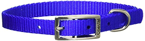 Coastal Dog Collar Small - 10 in. Blue with a Width of 3/8 in.