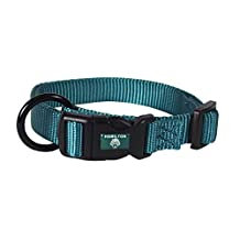Hamilton FAM 16/22 TE  3/4-Inch Adjustable Dog Collar, adjusts from 16-22-Inches, Teal