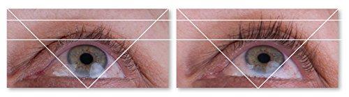 41zUK5drV-L Lipocils Eyelash Treatment Supplement, 0.34 fl. oz.
