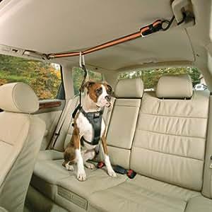 Amazon.com : Kurgo Automobile Zip-Line, Medium (Dogs 25 to