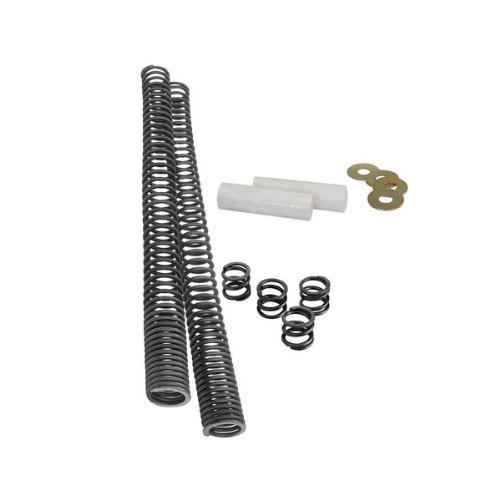 Fork Lowering Spring Kit - 3