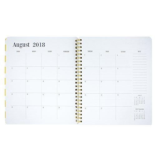 Capri Designs 2018-2019 Agenda - Today by Capri Designs (Image #4)