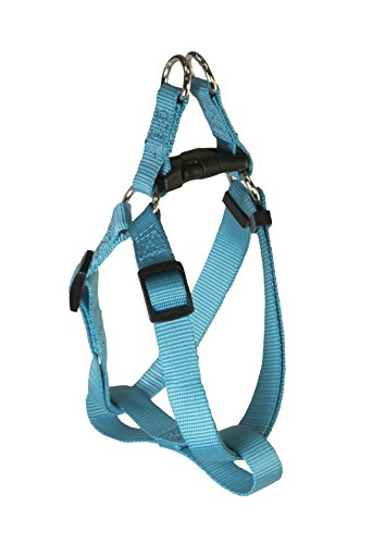 Pet Champion Medium 14-20 inch Chest Bright Polyester Step-In Halter Dog Harness, Sapphire Teal