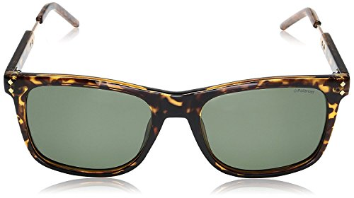 Green S Havana Dorado 2034 Pz Sonnenbrille Gold Polaroid PLD FwqtOx60