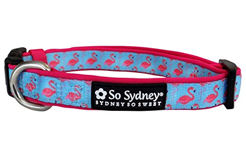 So Sydney Pet Sunshine Fun Collection - Adjustable Comfy Dog Collar or 5' Leash (S Collar, Fancy -