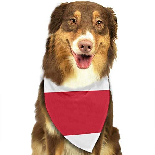 dolphin Ty Dog Bandana Scarf Costa Rica Triangle Bibs Printing Kerchief Set Accessories Dogs Cats Pets