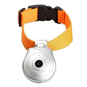 Mofek Collar del animal doméstico Cámara de vídeo digital del gato del perro collares de 8 GB de memoria Mini DV DVR - plata: Amazon.es: Deportes y aire ...