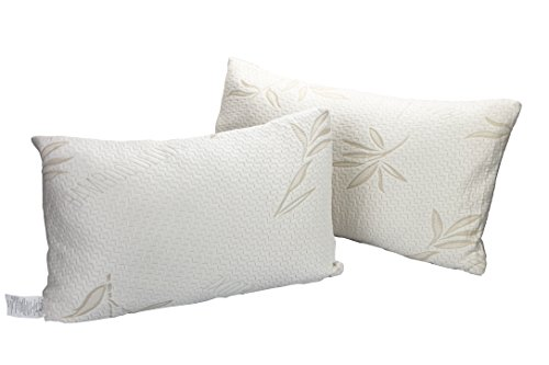 Price comparison product image EcoTrueBamboo Bamboo Deluxe Pillow (2, Queen)